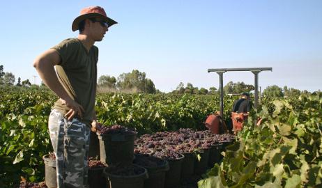 Italians 'exploited' on Australian farms