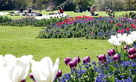 Spring back in Denmark, but for how long?