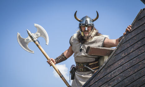 Viking dragon's head found at Birka