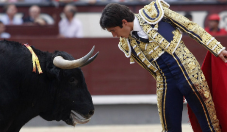 Olé! San Sebastian overturns bullfight ban
