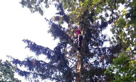 Terrified mum rescues boy stuck up tall tree