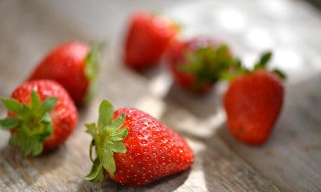 Swedish police recover stolen strawberry haul