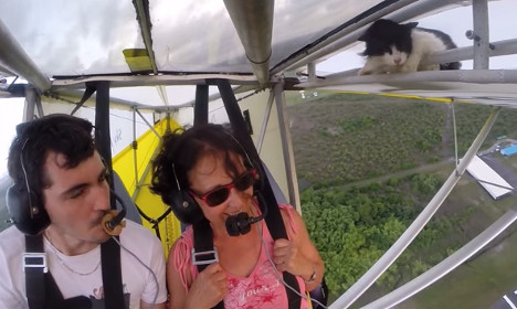 VIDEO: See the incredible flying cat