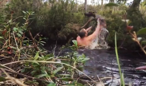 Swedish man rescues baby elk from cold creek