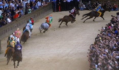 Animal activists call for Palio ban after horse dies