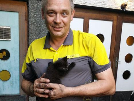 Farm kitten hitches ride to Vienna