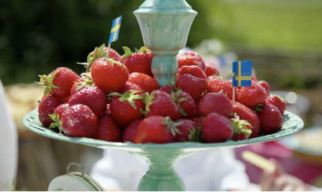 Fake Swedish berries get their day in court
