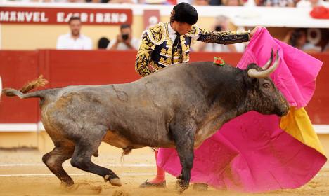 French bullfighting president mauled by bull