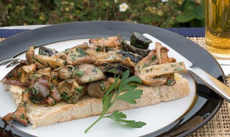 How to make seasonal Swedish mushroom toast