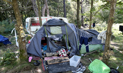 Two migrants injured in camping site attack