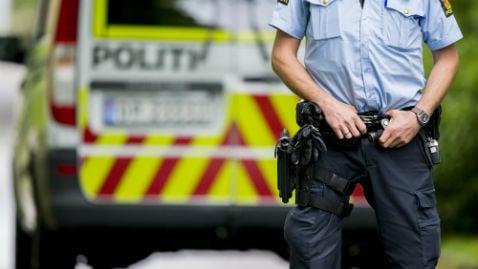 Guard admits to planting hoax bomb at Oslo Uni