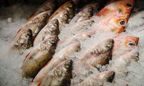 Researchers puzzled by declining fish health