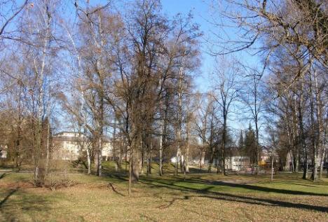 Eight arrests in Salzburg park stabbing