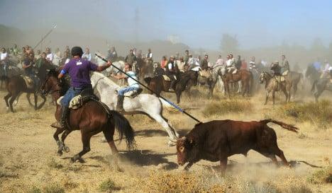 Protestors lock horns over Spain's controversial bull spearing festival