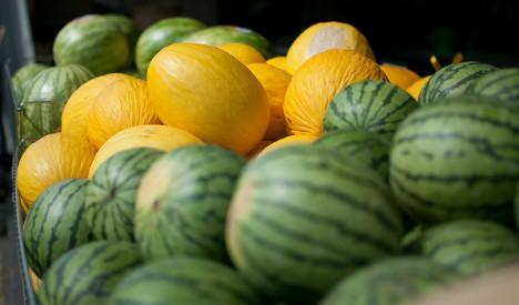 Farmer shoots immigrant dead over melons