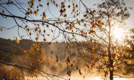 Swedish city basks in record autumn sunshine