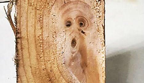 The Scream appears in a freshly sawn plank