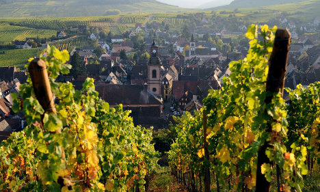 Winemakers promise Alsace red 'revolution'