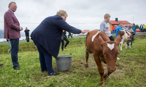 PM: Norway's cows fart too much