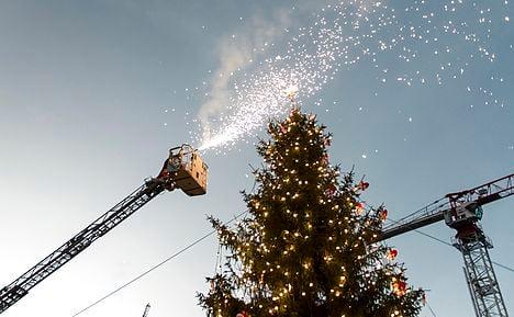 Copenhagen Christmas tree lit for 100th time