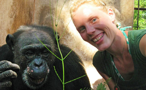 Vet's battle for chimp stranded in empty zoo