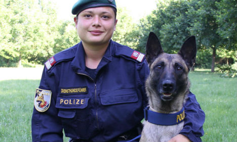 Police dog finds lost life savings in kitchen