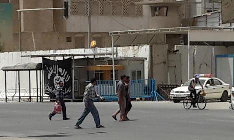 Kurdish troops rescue Swedish girl held in Iraq