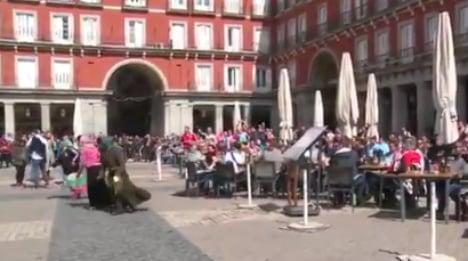 Dutch football fans filmed humiliating beggars in Madrid