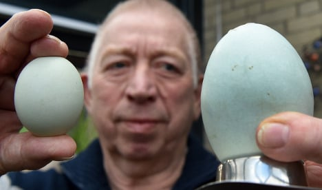 Farmers crack own record with 'world's biggest egg'