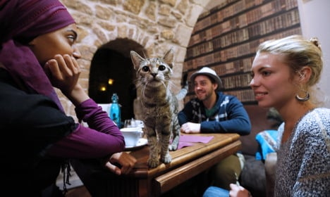 Nine of the quirkiest things you can see in Paris