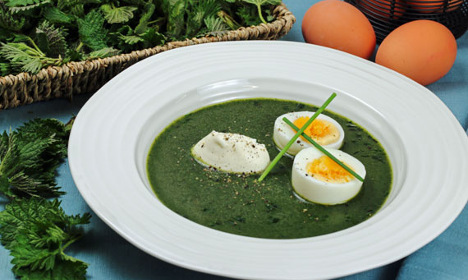 How to make this delicious Swedish spring nettle soup