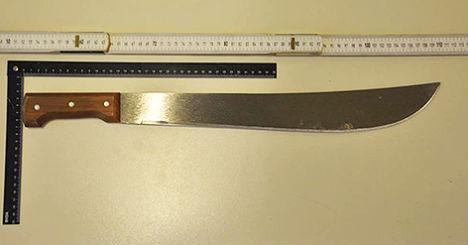 Machete driver 'forgot' he was holding 60 cm knife