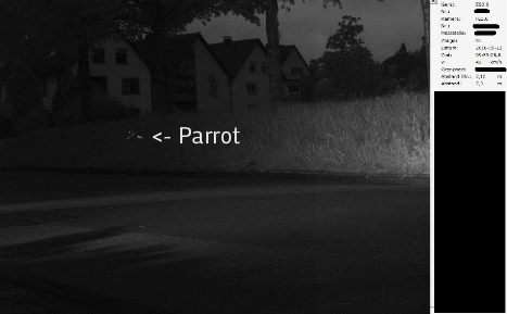 Police snap parrot going at 1.5 times speed limit