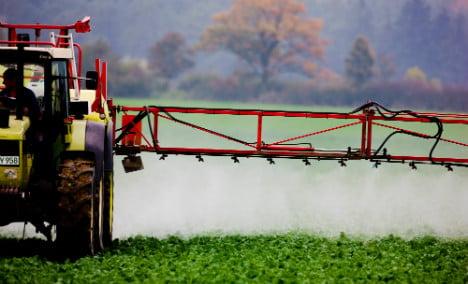German chemical giant in talks to buy Monsanto