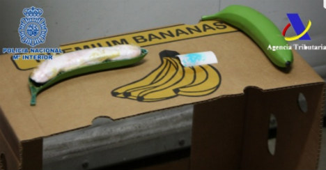 Shipment of cocaine found hidden within plastic bananas