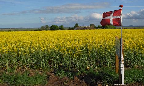 World still loves Denmark despite negative attention