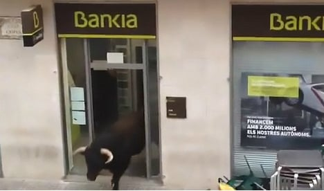 Bull pops into high street bank during Spanish fiesta