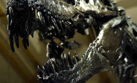 Tyrannosaurs used to roam Germany: researchers