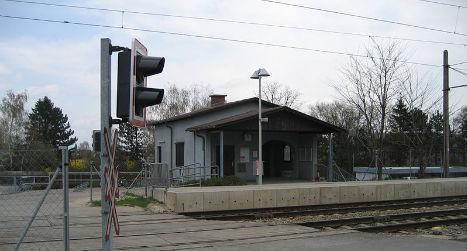 Adults lead 50 kids under dangerous railway crossing