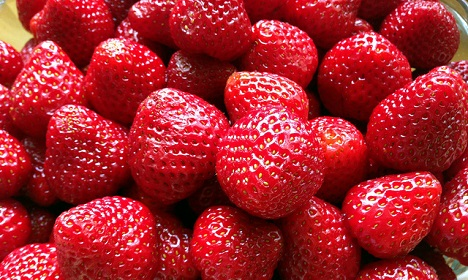 Danish villagers band together to catch berry booth bandits