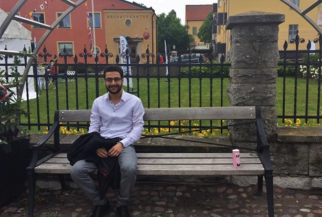 What can newcomers learn about Sweden at Almedalen?