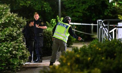 Swedish police fear serial rapist on loose in Malmö