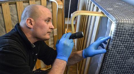 Don't let them bite! Bedbugs proliferate in Swedish hotels