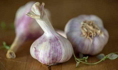 British duo cleared in bizarre Nordic garlic smuggling case