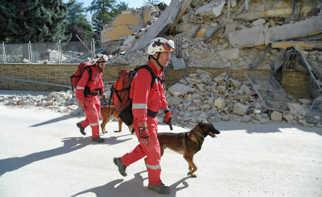 The incredible hero dogs of Italy's earthquake