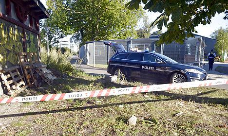 Female jogger left 'near death' in Copenhagen attack