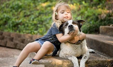 Dogs lower risk of childhood ailment: Danish study