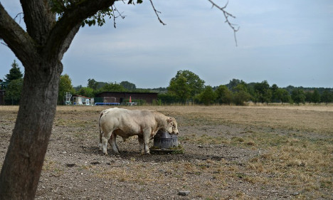 Drought forces France to roll out water restrictions