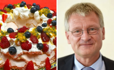 Far-right AfD leader injured by flying frozen cake