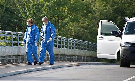 Danish police chase clues in motorway 'stone murder' case
